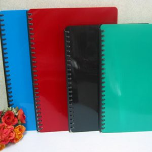Clear Books & Clear Sheet Protectors